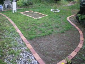 西洋芝の種蒔き二年目の春のその後1