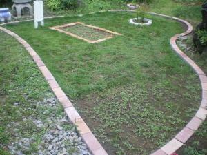 西洋芝の種蒔き二年目の春のその後2
